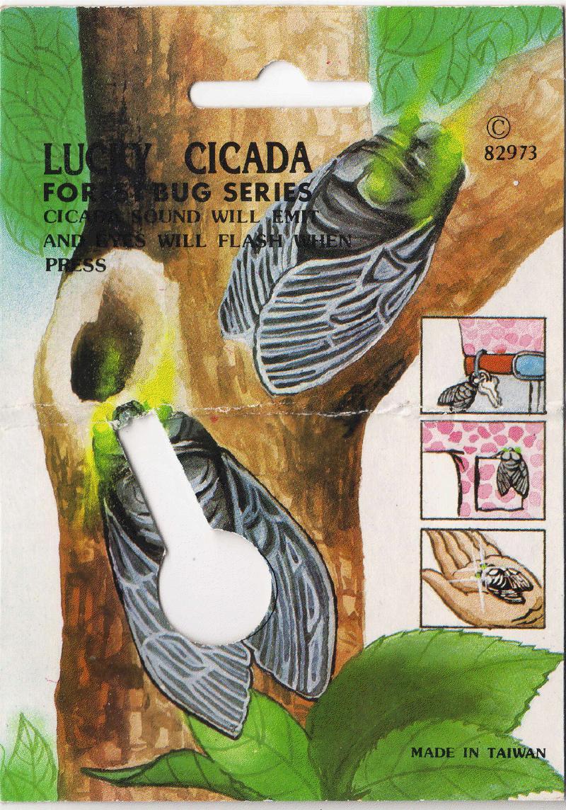 Lucky Cicada