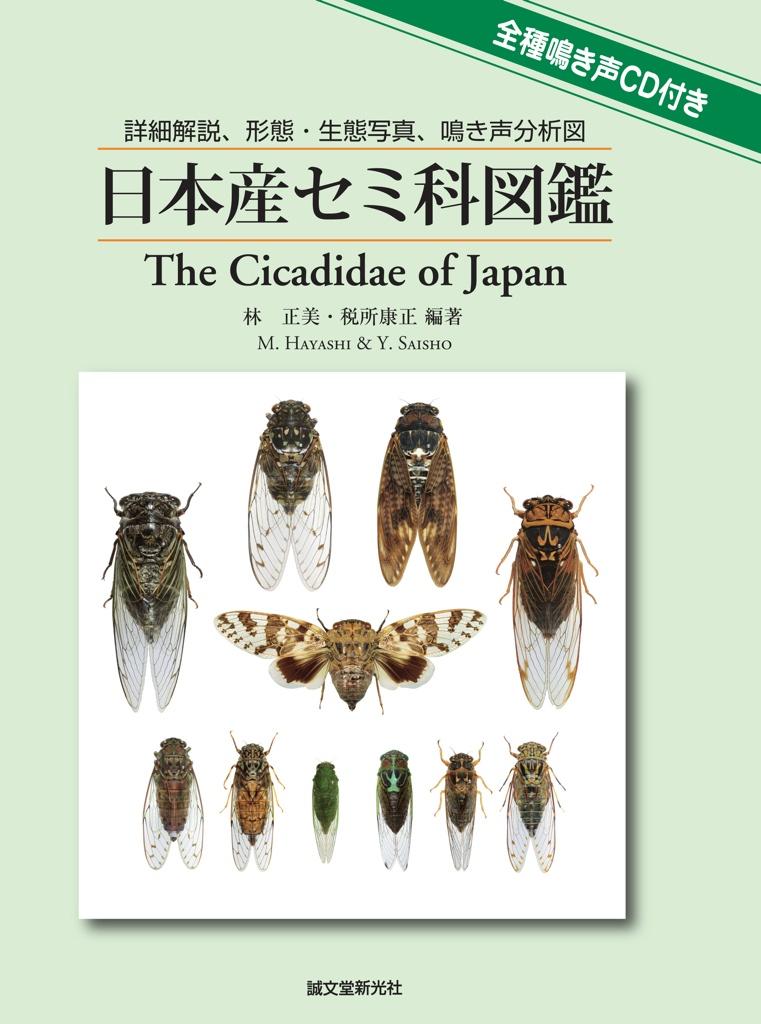 M. Hayashi and Y. Saisho (2011). The Cicadidae of Japan