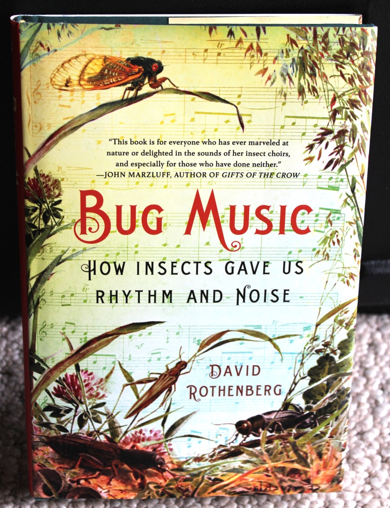 Bug Music How Insects Gave Us Rhythm and Noise by David Rothenberg
