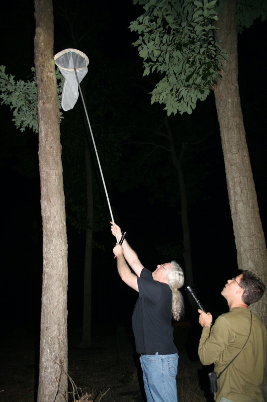 Dan and Elias netting a T. auletes exuvia. Photo by Annette DeGiovine-Oliveira:
