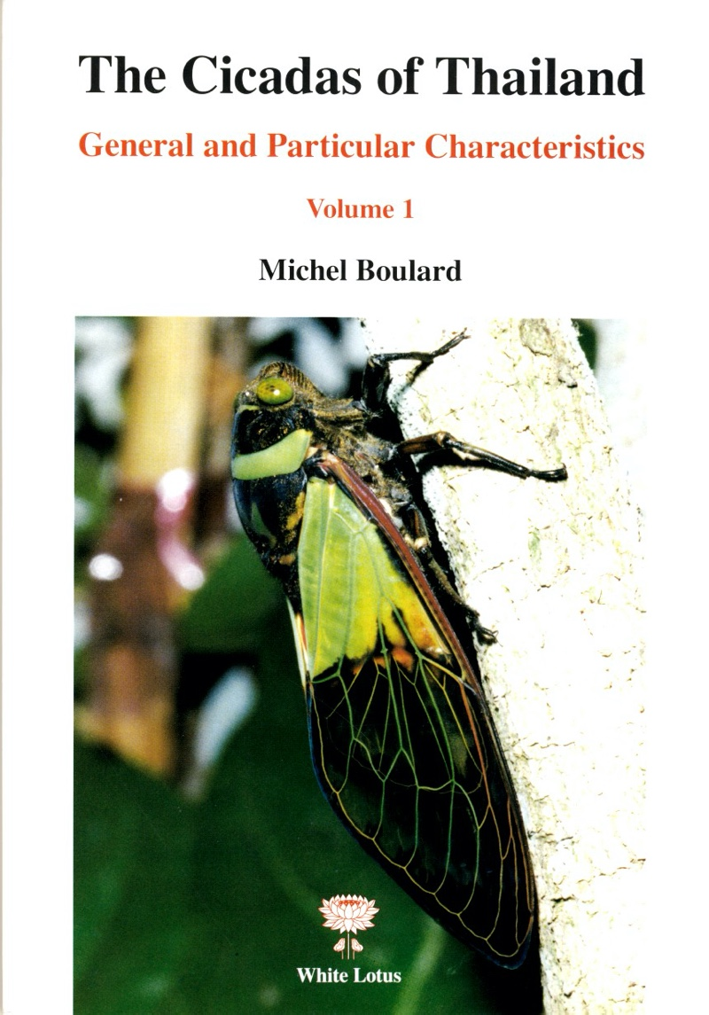 The Cicadas of Thailand by Michel Boulard