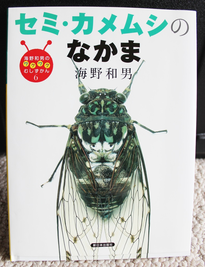 And Another Cicada Book from Japan