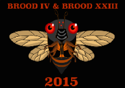 2015 BROOD IV AND XXIII