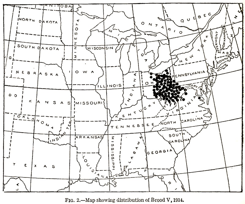 Marlatt, C.L.. 1914. The periodical cicada in 1914. United States. Bureau of Entomology. Brood Map for Brood V.