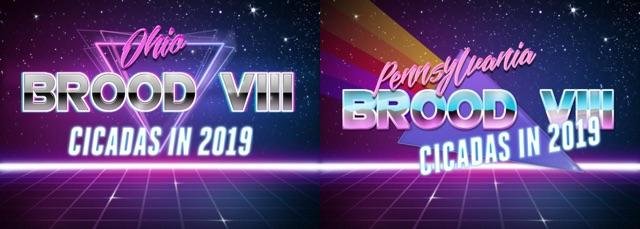 Brood VIII