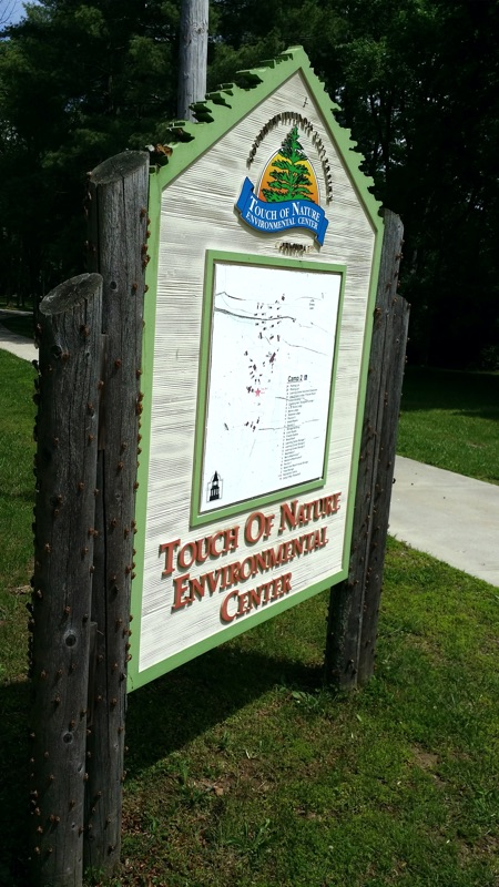 Cicada skins on Touch of Nature sign in Illinois