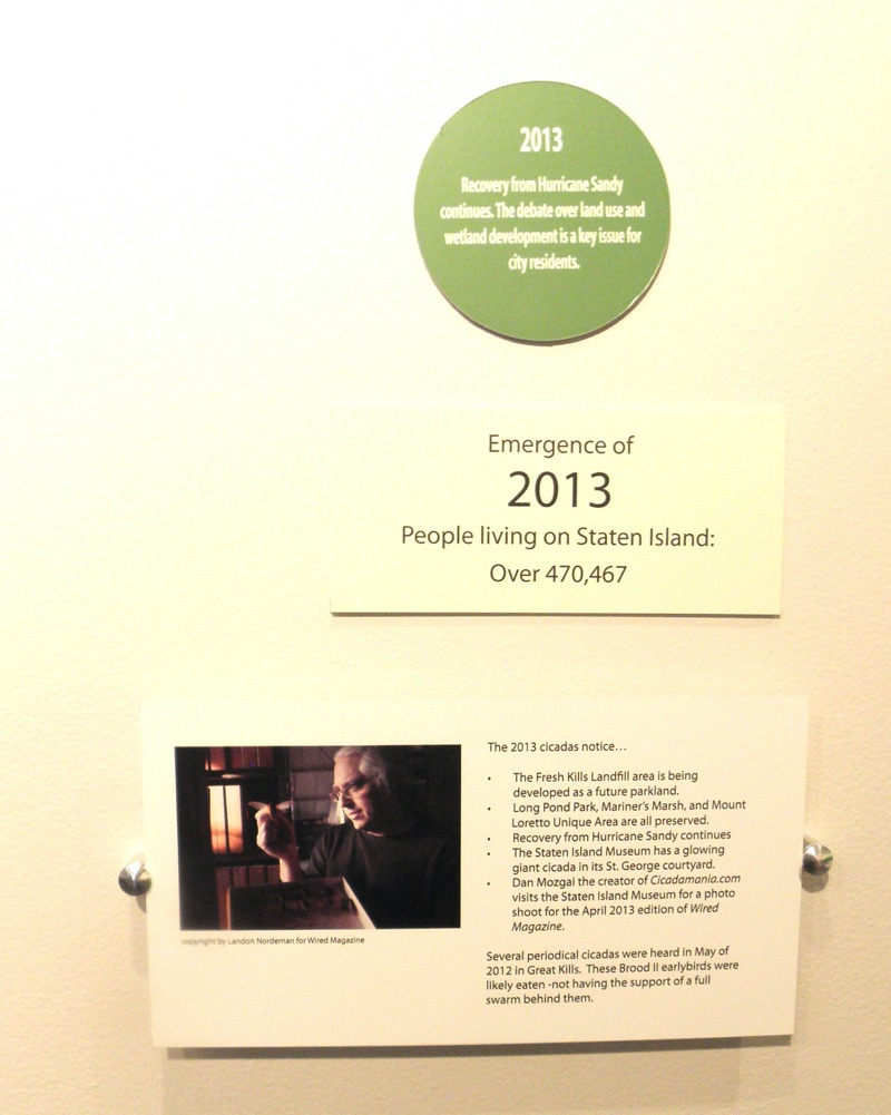 Dan Mozgai featured on the Staten Island Museums Cicada Timeline
