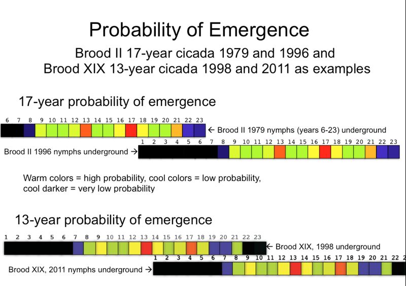 Probability of Straggling chart from Chris Simon
