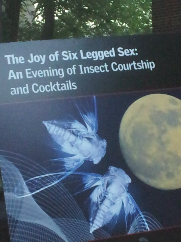 The Joy of Six Legged Sex event at the Staten Island Museum