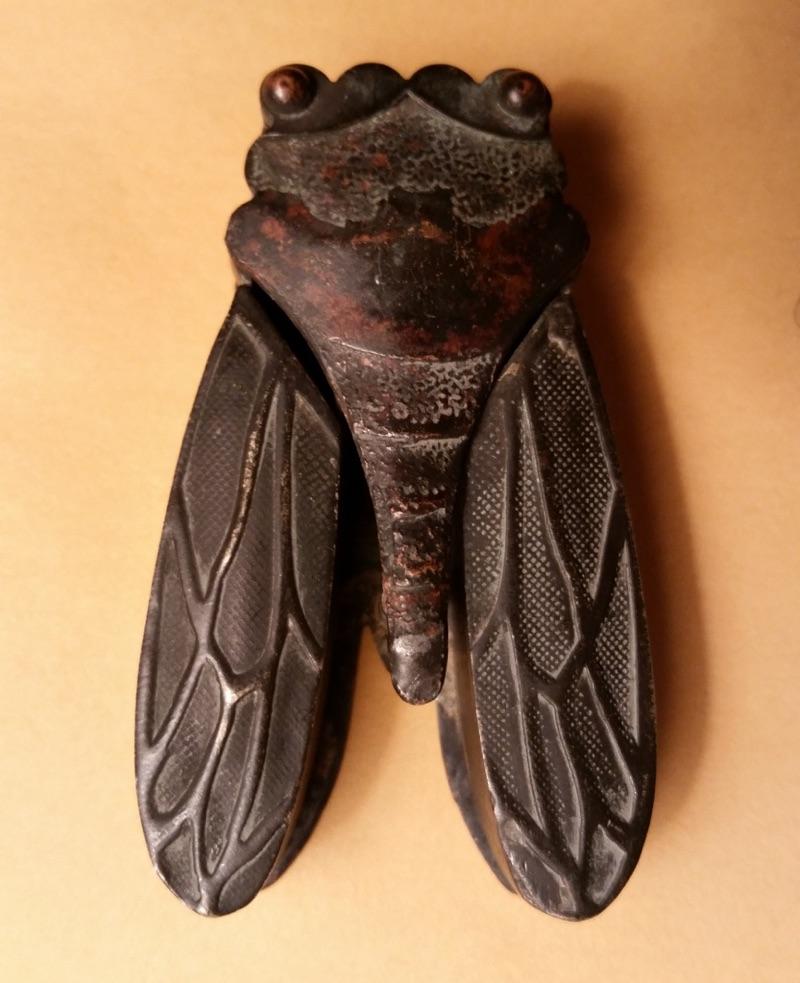 Mystery Cicada Object