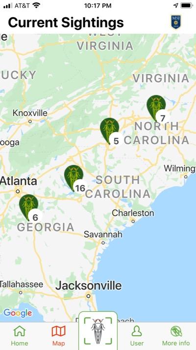 2020 Cicada Safari app