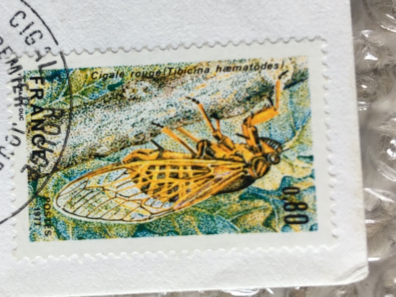 Tibicina haematodes (Scopoli 1763) stamp from France