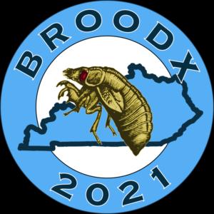 Brood X 2021 Kentucky