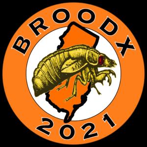 Brood X 2021 New Jersey