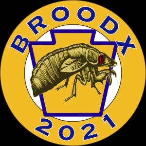 Brood X 2021 Pensy