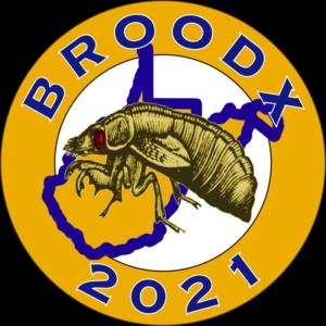Brood X 2021 West Virginia800