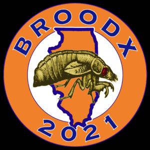 Brood X Illinois