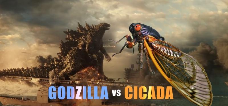 Godzilla vs Cicada