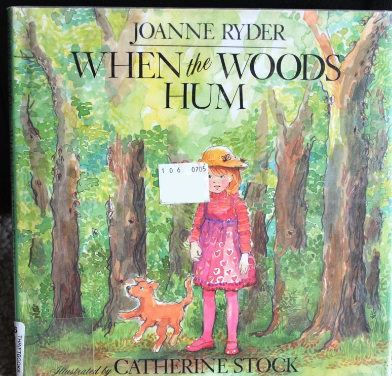 When the Woods Hum by Joanne Ryder illustrated by Catherine Stock